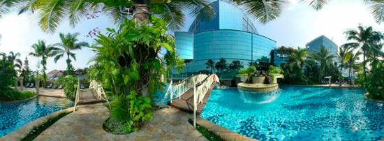   : Normal Gran Melia Jakarta Swimming Pool
