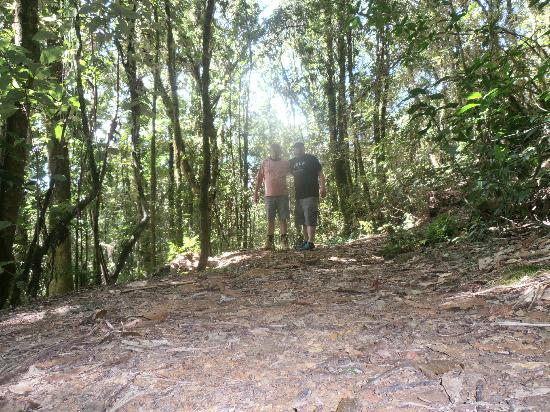Parque Nacional La Tigra: me and my cousin oscar o the trail