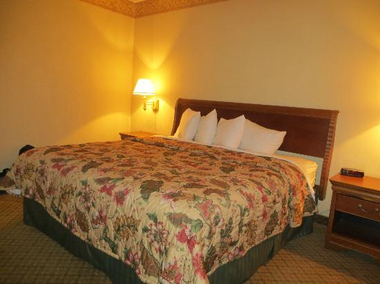 Country Inn & Suites By Carlson, BWI Airport (Baltimore), MD: Room 225