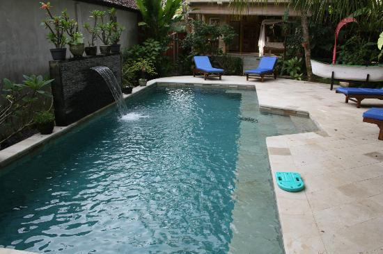 Desa Sanctuary, The Village: Pool area