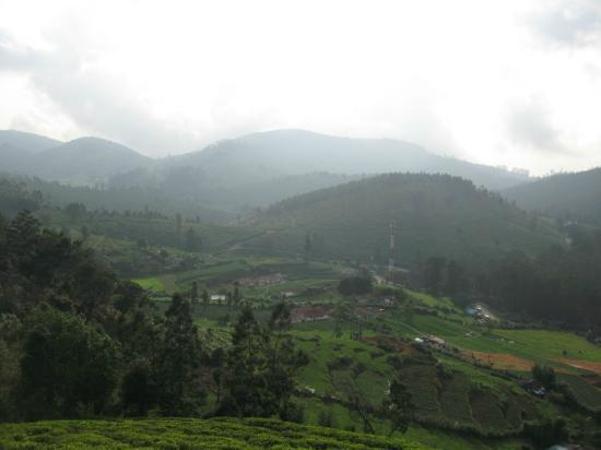 United-21 Paradise, Ooty: View from the top