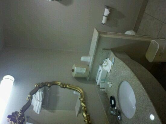 BEST WESTERN University Inn: bathroom