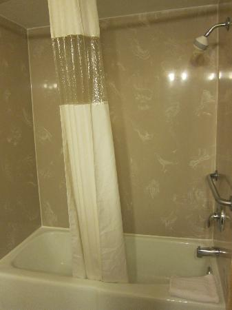 Days Inn Monterey-Fisherman's Wharf/Aquarium: Shower