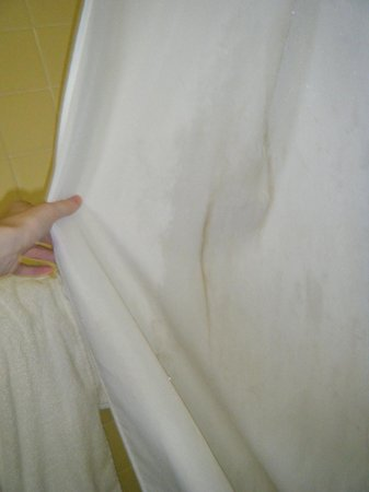 Jasper&#39;s Motel &amp; Restaurant: Dirty shower curtain.