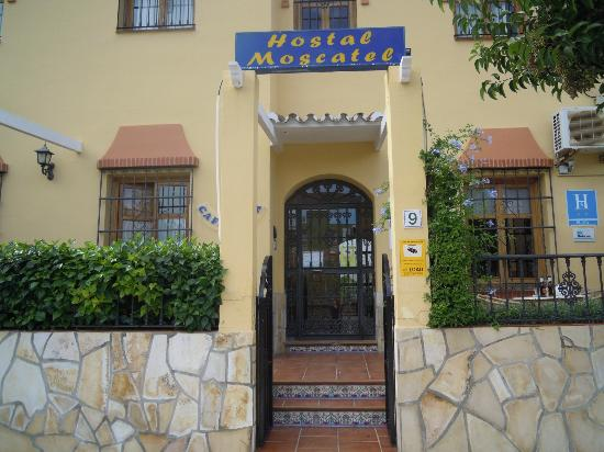 Photo of Hostal Moscatel Málaga
