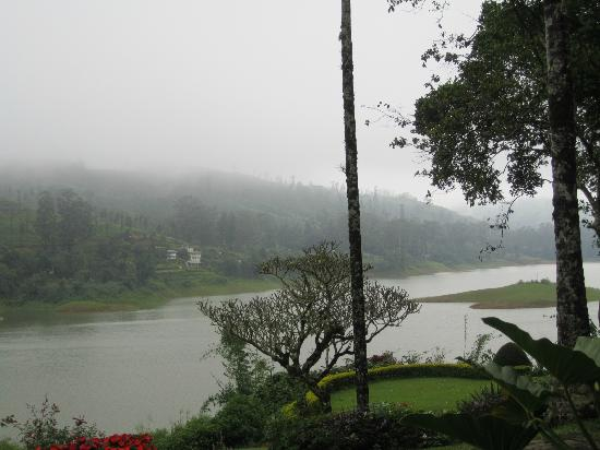 Ceylon Tea Trails: View from room