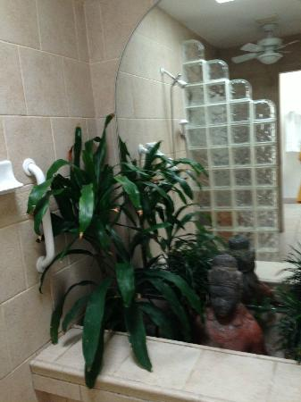 Pavilions and Pools Villa Hotel : There were plants in our shower... Along with a giant mirror.