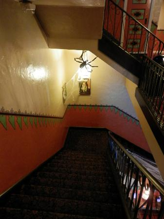 The Historic Hotel Congress: Stairway during Halloween.