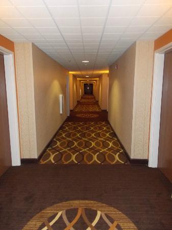 Holiday Inn Express Peachtree Corners/Norcross : HALLWAY TO ROOM