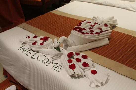 Sarova Panafric: Towel dec 8