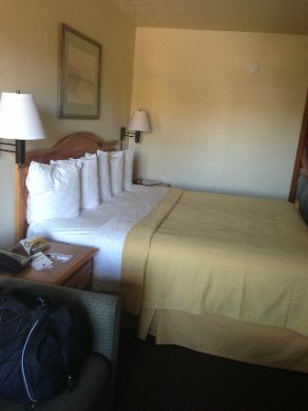 Quality Inn & Suites at Dollywood Lane: King sized bed...