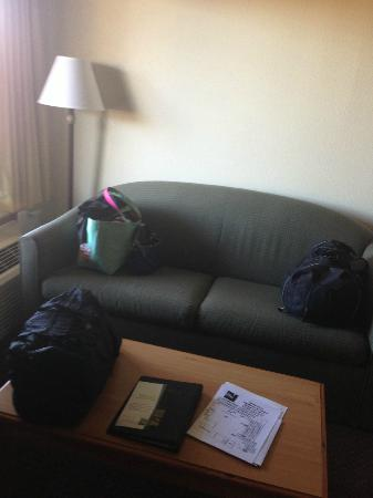 Quality Inn & Suites at Dollywood Lane: Couch