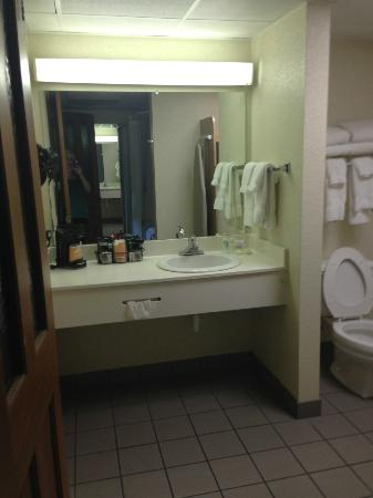Quality Inn & Suites at Dollywood Lane: vanity