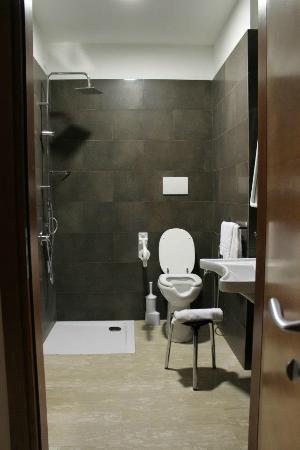 Oasi Village Hotel & Resort: handicapped washroom with no shower walls.