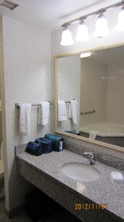 Drury Inn & Suites Dayton North: Sink area outside bathroom.