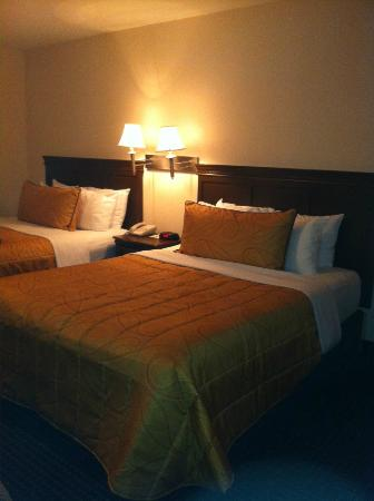 West Edmonton Mall Inn: Room 119