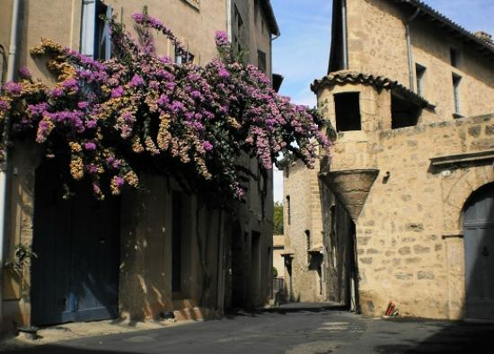 chateau area in the old city picture of pezenas herault. Black Bedroom Furniture Sets. Home Design Ideas