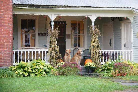 Hollister Hill Farm B&B: Welcoming committee