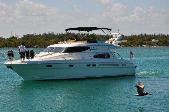 Miami boat rental for birthday party. - Picture of Yacht Charters in ...