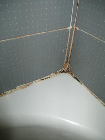 Ramada Jerusalem: Bathroom Mildew