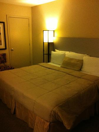 Sole Inn and Suites: 1 king room