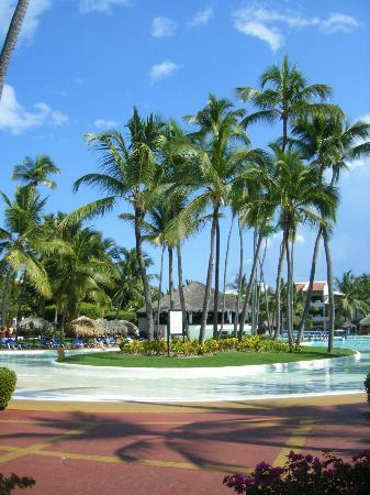 Occidental Grand Punta Cana: Beach