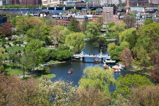 Four Seasons Hotel Boston : Public Garden views from your hotel room
