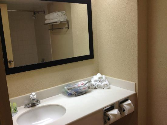 BEST WESTERN Lake Buena Vista Resort Hotel: Make up room next to bathroom. Closet in the mirror.