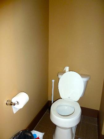 Spirit Ridge Vineyard Resort & Spa: No grab bars by toilet