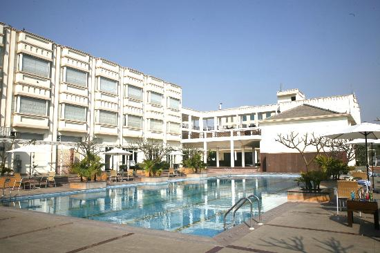 The Treehouse Hotel, Club & SPA, Bhiwadi