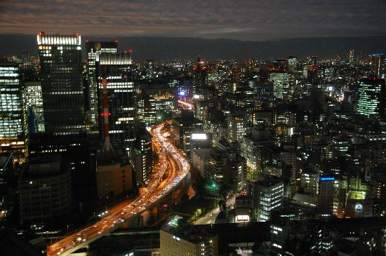Mandarin Oriental, Tokyo: My view