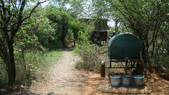 Mosetlha Bush Camp & Eco Lodge: lodge