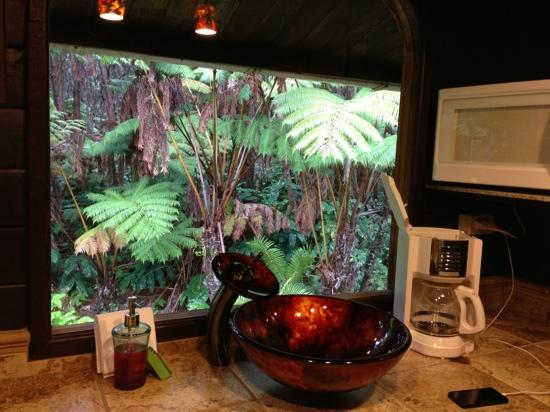 Chalet Kilauea: Hapu'u Bungalow kitchen area.  Rain forest out the window.