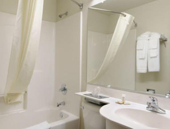 Microtel Inn by Wyndham Ardmore: Bathroom