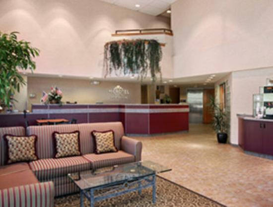 Microtel Inn & Suites by Wyndham Colorado Springs: Lobby