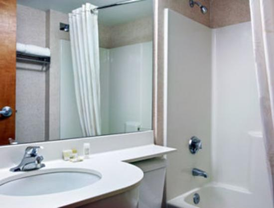 Microtel Inn & Suites by Wyndham Colorado Springs: Bathroom