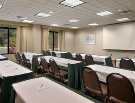 La Quinta Inn &amp; Suites Tampa North I-75: Osprey Room