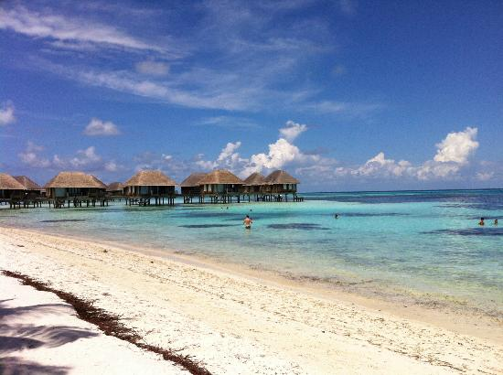 Club Med Kani: Overwater Bungalows