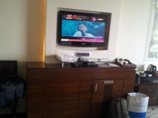 Optus Sarovar Premiere Gurgaon: screen in the room