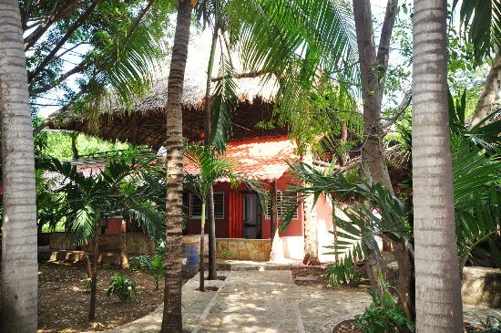 Hostal Real Masachapa: Jardines