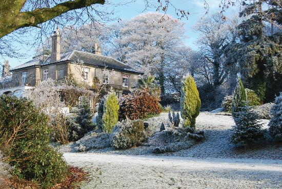 Gulworthy, UK: A frosty morning
