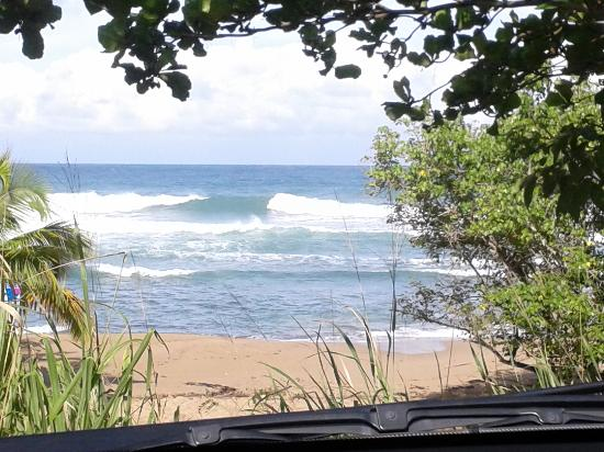 EV's Vacation Rentals Rincon Puerto Rico: Domes Beach. awesome surf spot