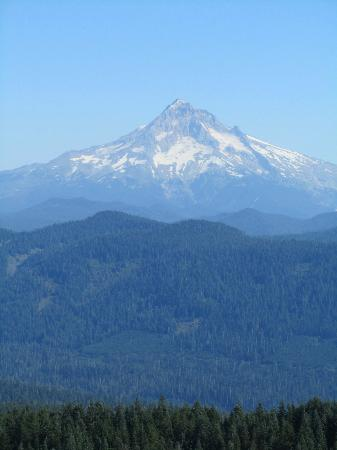 Bridal Veil Lodge: Mt. Ranier