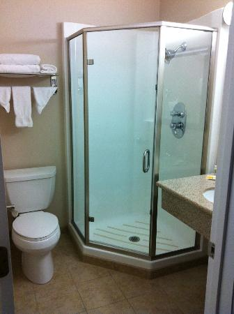 Americas Best Value Inn Riverside: bathroom with shower stall