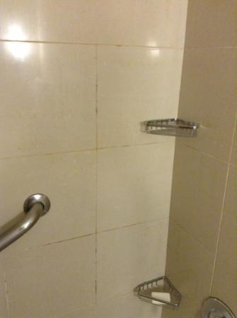 Doubletree Collinsville/St. Louis: grime in the tile cracks
