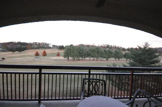 RiverStone Resort: Back balcony view