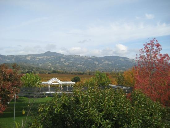 Geyserville Inn: view from 221