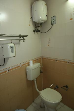 Hotel Taj Khema: swiss cottage toilet