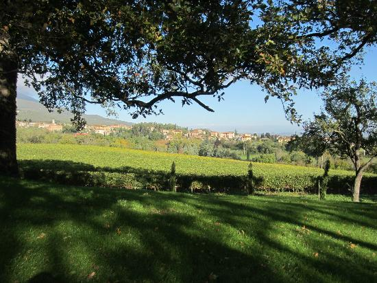 Agriturismo Casa Fabbrini: View from the garden