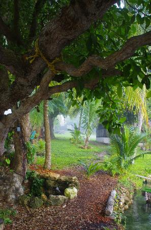 Le jardin picture of cabanas hostal y camping magic for Camping le jardin
